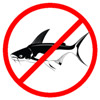 Pangasius are not good aquarium fish