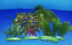 Picture of plastic plants